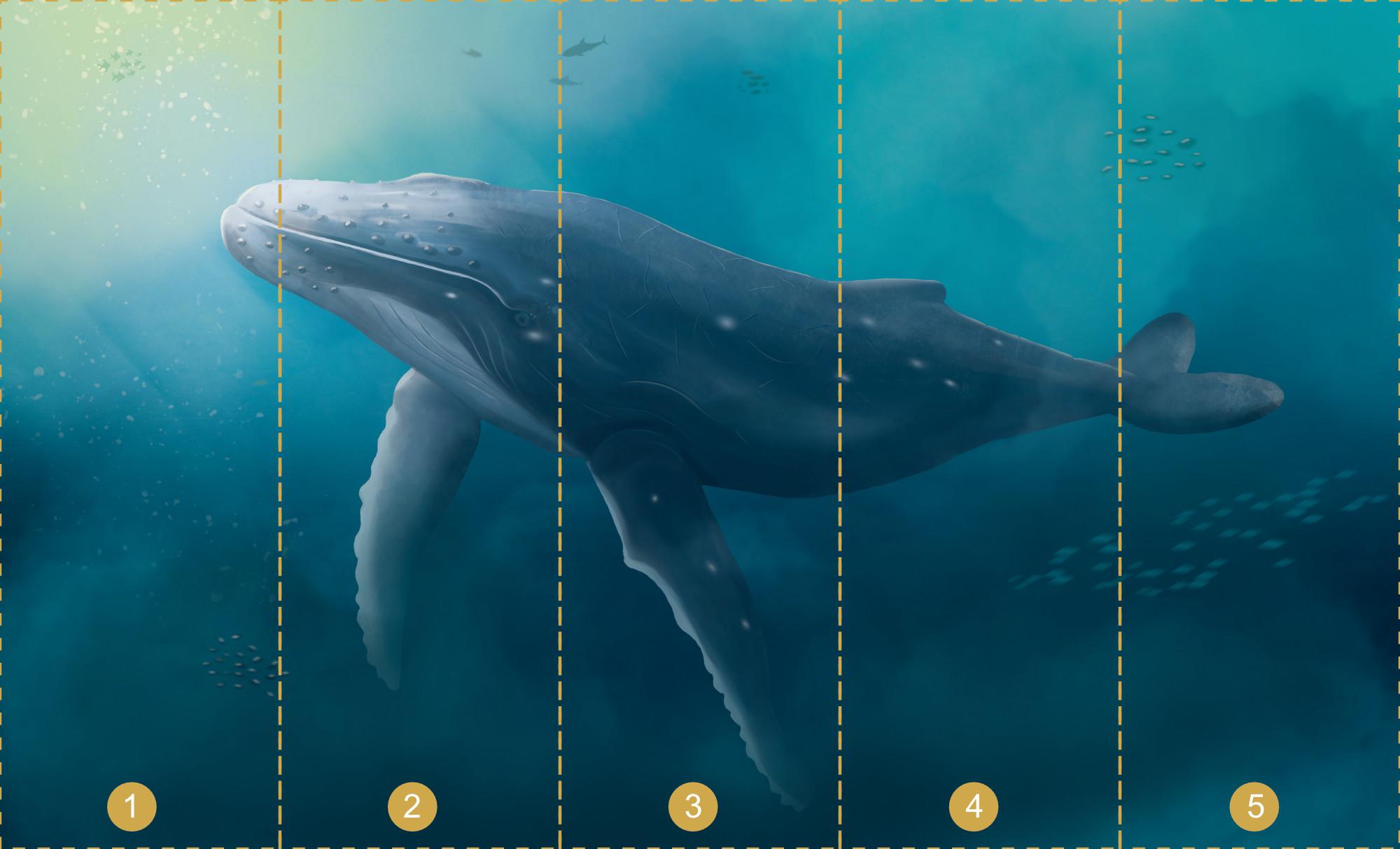 Papier peint panoramique Baleine et fond marin